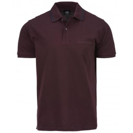 Polo Shirt Dickies Morton Maroon