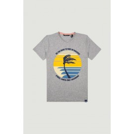 T-Shirt Junior O'Neill Palm Print Silver Melee