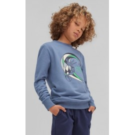 Sweatshirt Crew Junior O'NEILL Circle Surfer Walton Blue