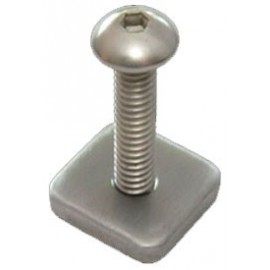 Longboard Screw & Plate FCS